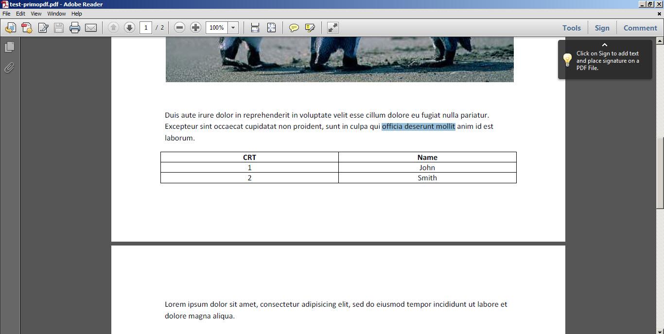 primo-pdf-71-lv2-6